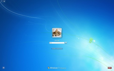 Windows 7 login screenshot